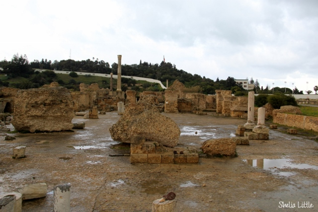Carthage, Tunisia  ~ Punic and Roman Ruins