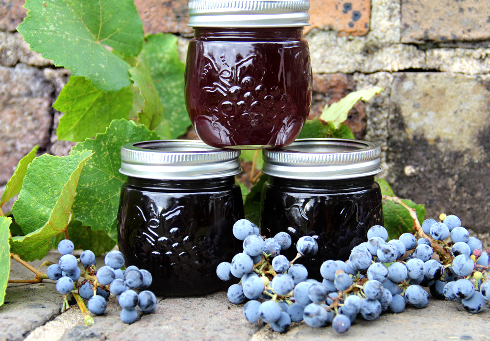 Fresh Homemade Grape Jelly Sweet Southern Blue